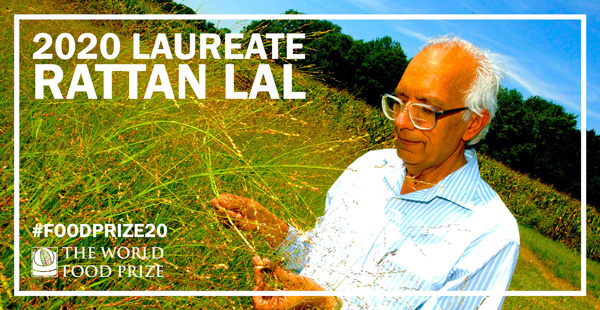 Dr. Rattan Lal examining crops in a field. 2020 Laureate Rattan Lal; #foodprize20; The World Food Prize