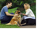 Pets and our health